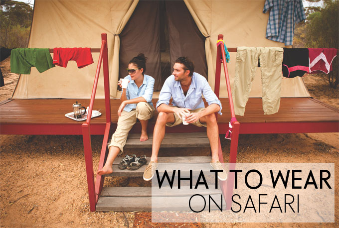 safari-chic-top-feature2
